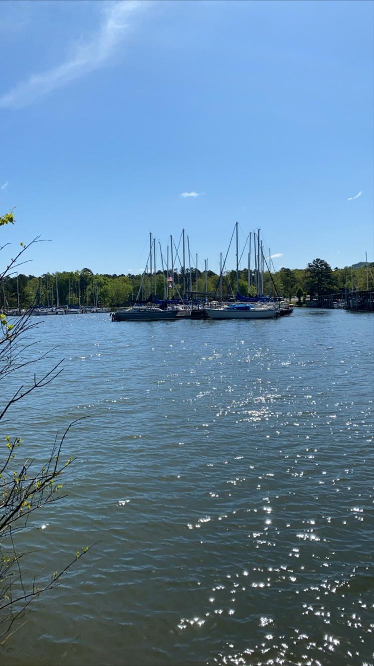 Lake Maumelle Marina